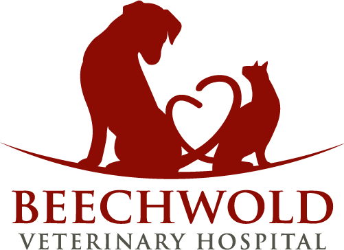 Beechwold Veterinary Hospital